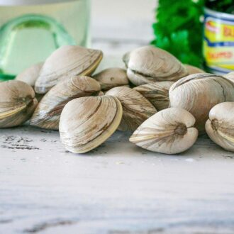 Buy Clams Online from CS Foods